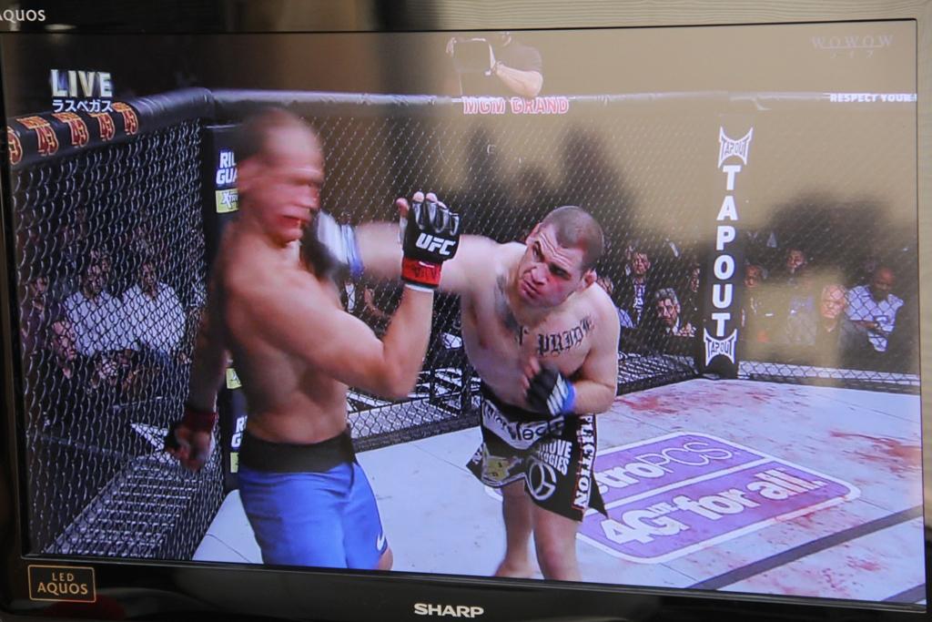 年末年始TV観戦UFC-DREAM-Boxing-INOKI-プロレス
